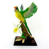 Boehm Bird Figurine, Orange Fronted Parakeet 40517