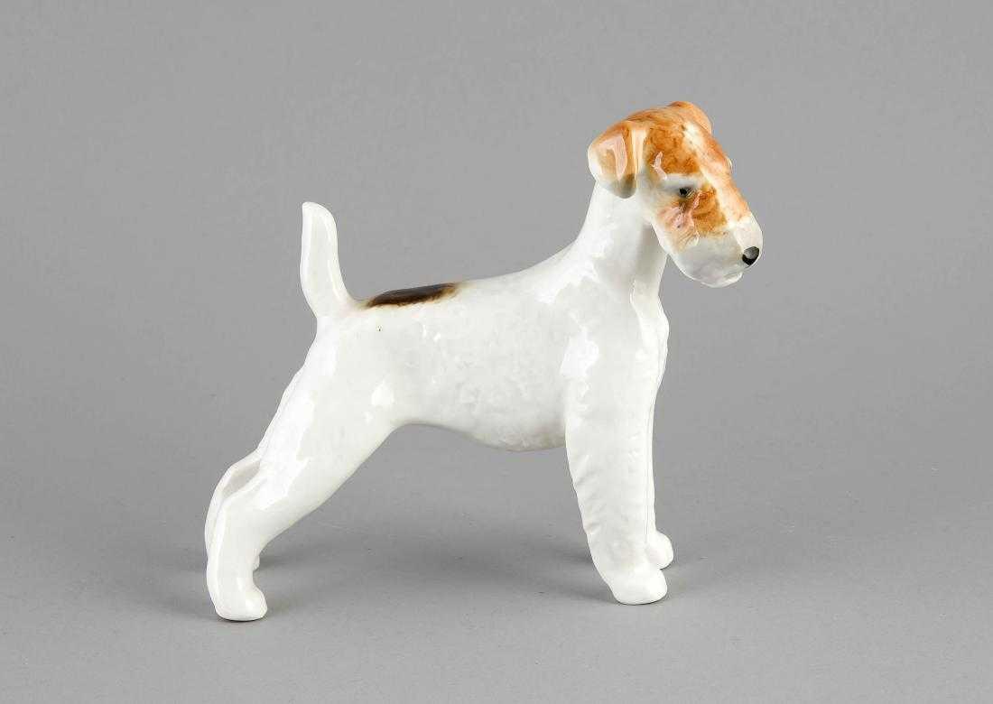 Fox Terrier, Lomonosov-Fabrik, St