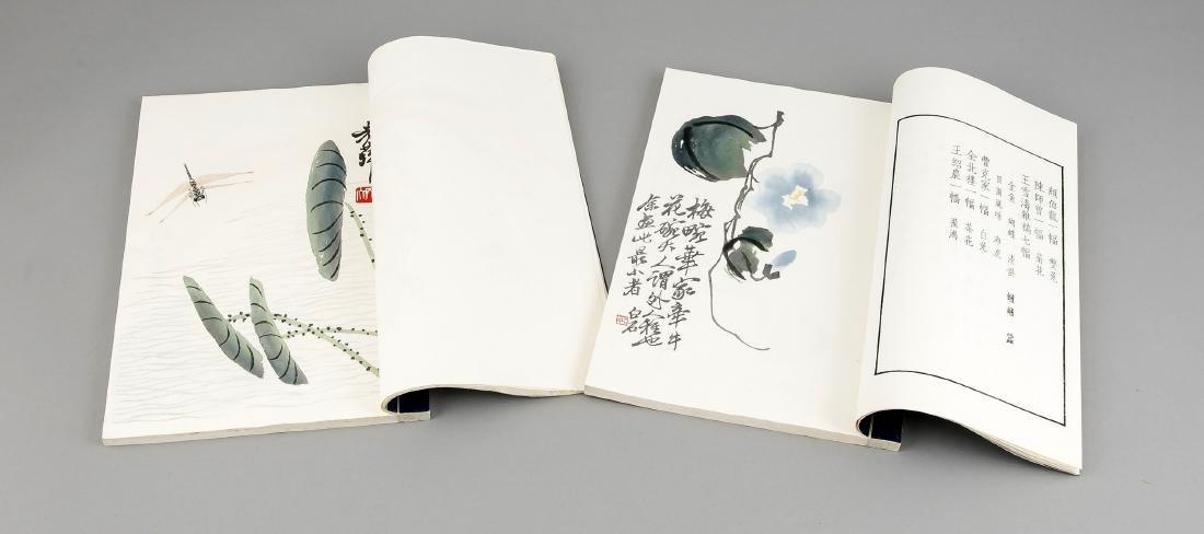 Leporello-Album mit 2 Bänden Holzschnitt-Drucken Qi - 4