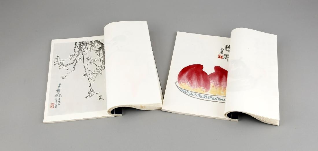 Leporello-Album mit 2 Bänden Holzschnitt-Drucken Qi - 6