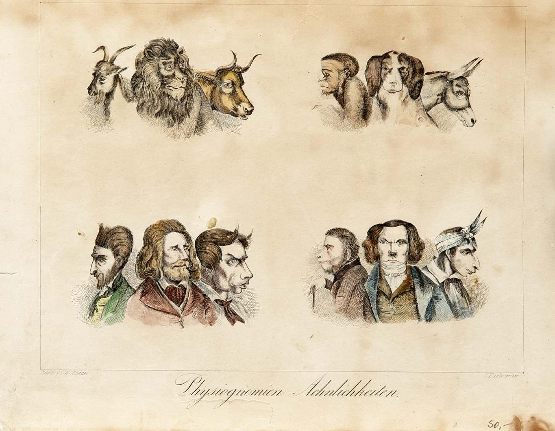 Caricatures, compilation of 12 caricatures of the 19th - 3
