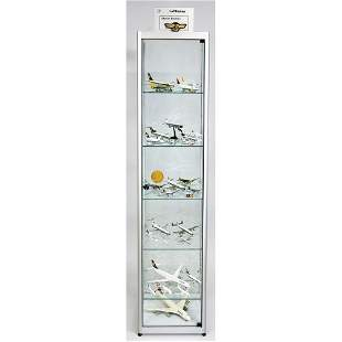 Display case with airplane models,