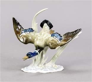 Wild duck in flight, Hutschenreuther