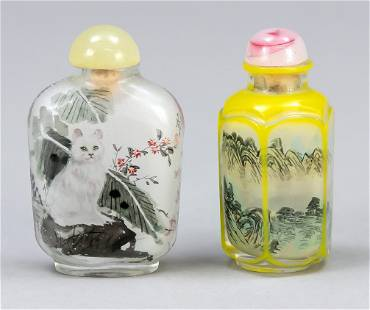 2 x snuffbottle, China, 19th/2