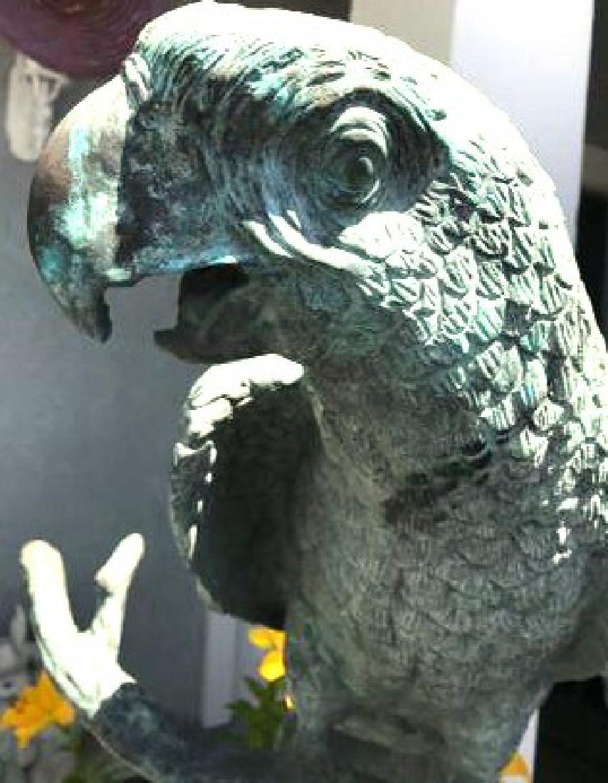 Antique Solid Bronze Bird Statues of McCaw Birds (a