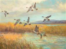 """""""Startled Pintails,"""" an oil on board, by Frank Vining"""