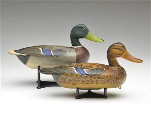Excellent pair of mallards, Roy Patterson, East Peoria,