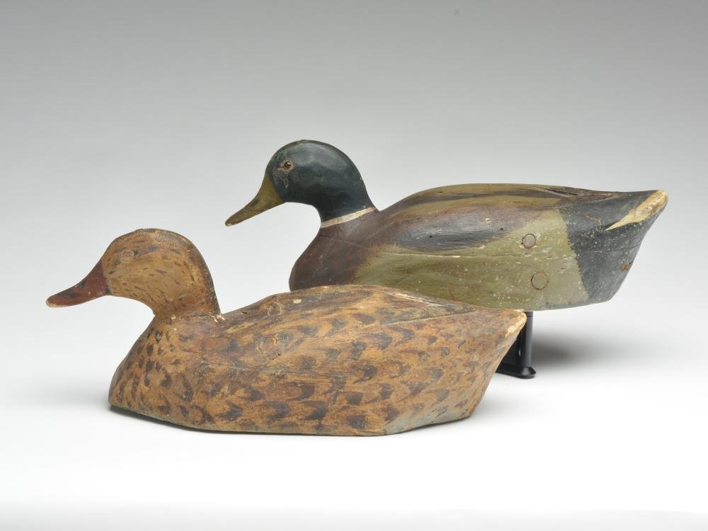 Very early pair of mallards, Mike Frady, New Orleans,