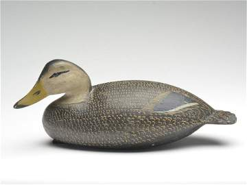 Outstanding and important hollow carved black duck, Ira