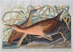 John James Audubon.