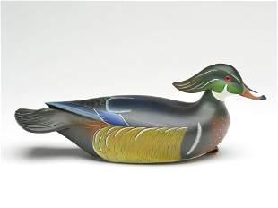 Wood duck drake, Matt Geis, Cherry Hill, New Jersey.