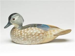 Important wood duck hen, Tan Brunet, Galliano,