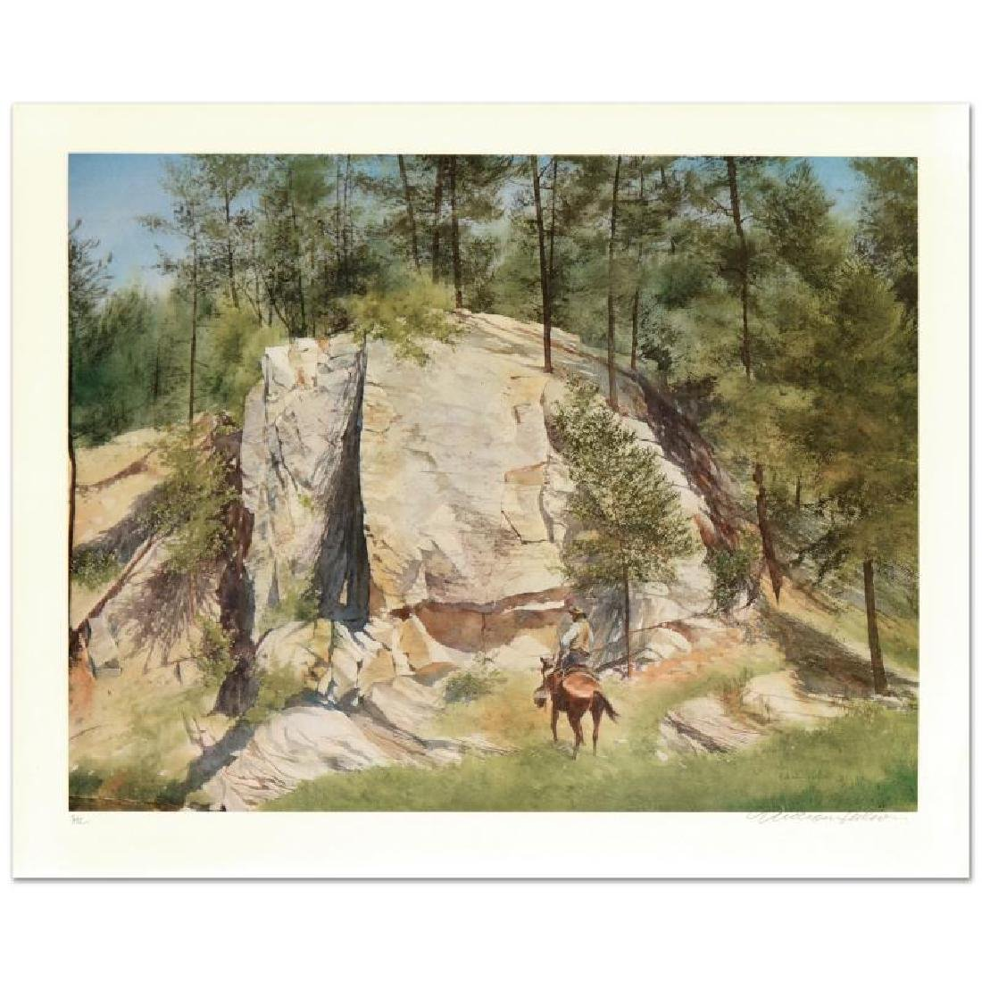Cleft Rock by Nelson, William