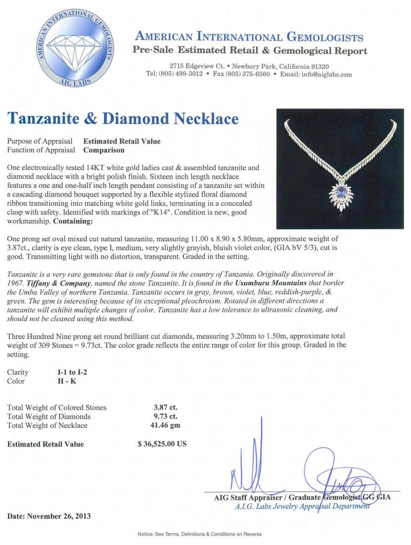 14KT White Gold 3.87 ctw Tanzanite and Diamond Necklace - 3