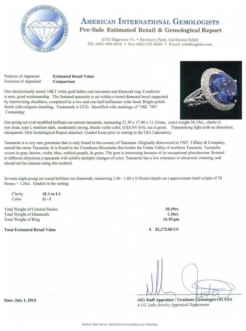 18KT White Gold GIA Certified 30.19 ctw Tanzanite and - 5