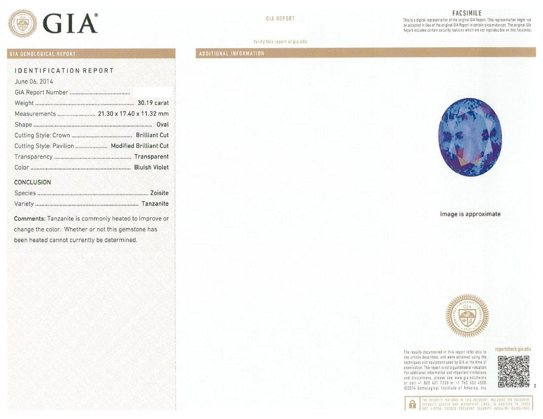 18KT White Gold GIA Certified 30.19 ctw Tanzanite and - 6