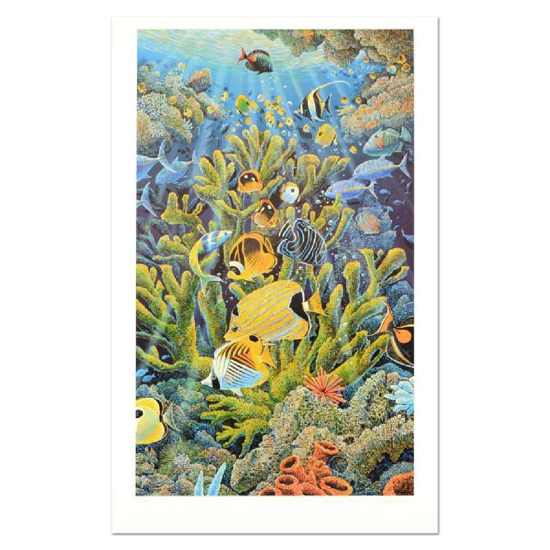 Reawakening the Sea by Nelson, Robert Lyn - 3