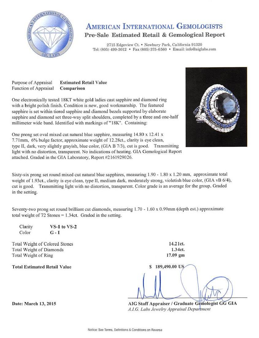 14.21 ctw Sapphire and Diamond Ring - 18KT White Gold - 4