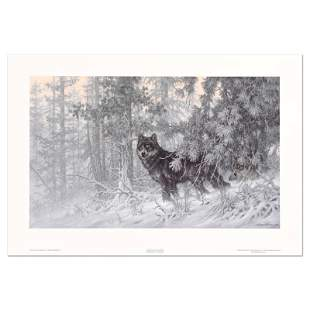 Phantom of the North - Wolf (Small) by Fanning