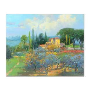 The Olive Grove by Feng Original