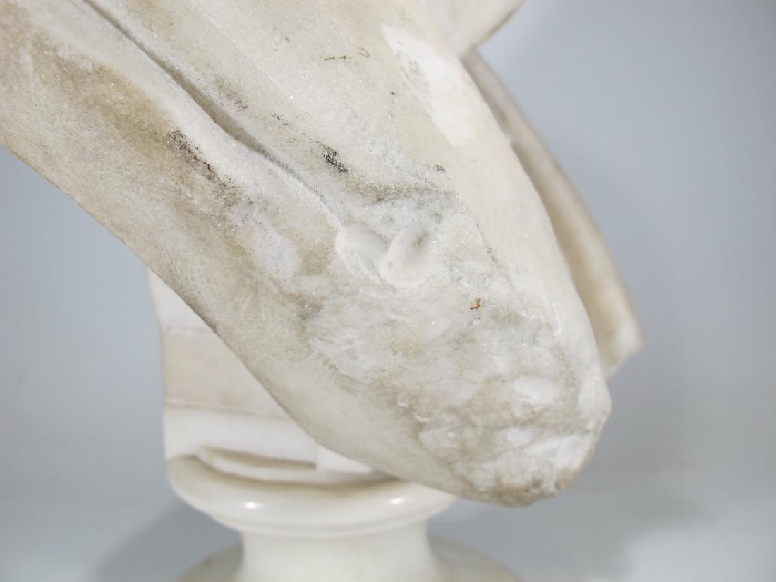 Signed F. FABIANI, Genova, Italy marble bust - 9