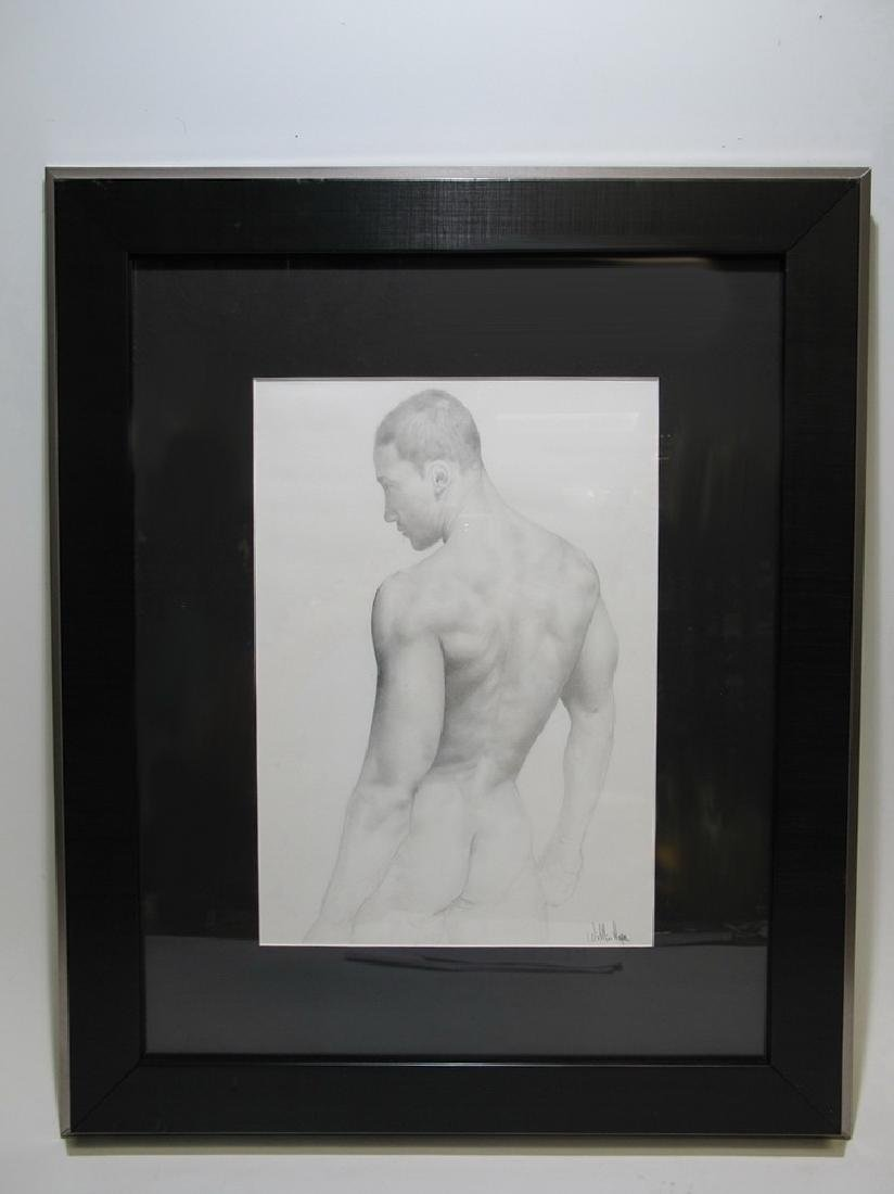 Willis Vega male nude pencil drawing