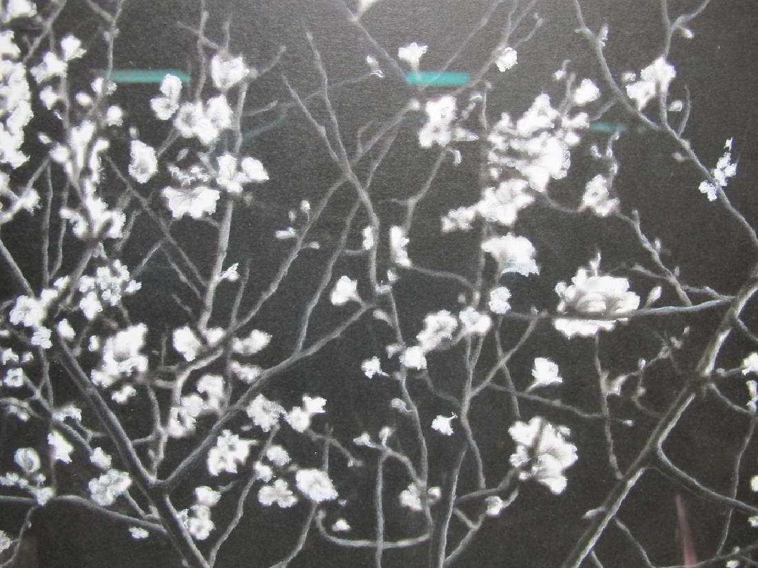 Willis Vega white pencil on black drawing - 4