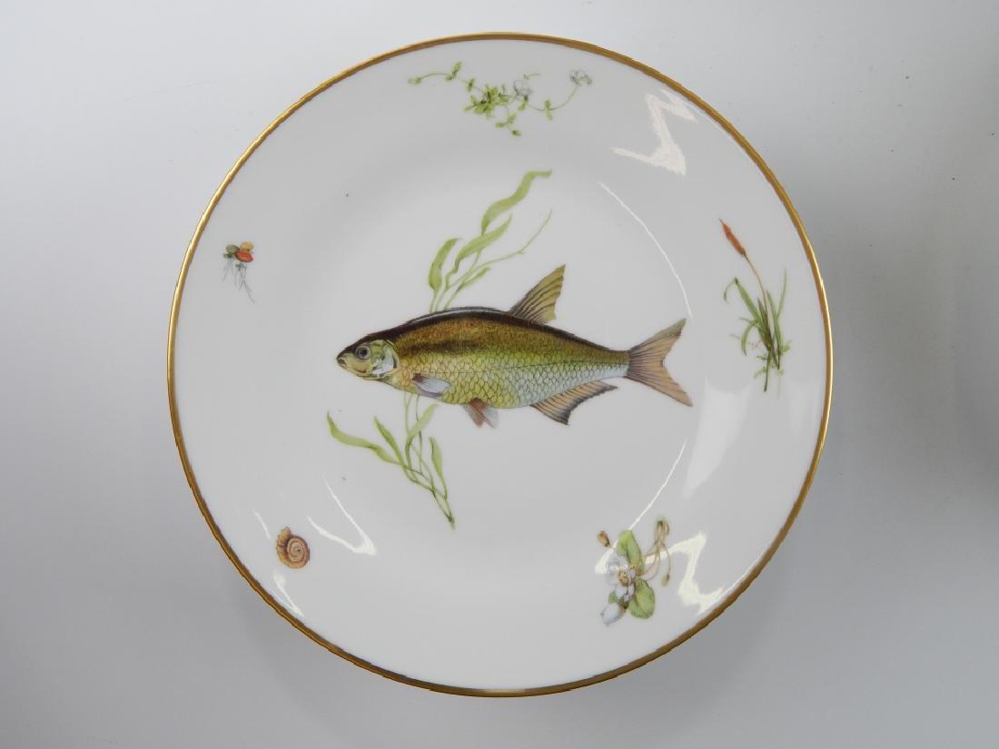 13 RICHARD GINORI QUENELL FISH DINNERWARE PIECES - 5