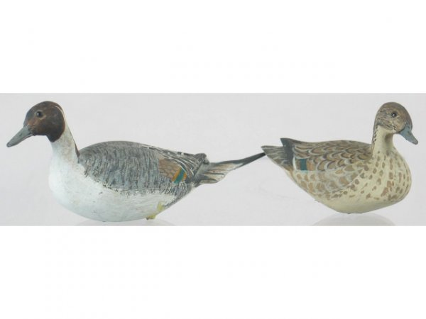 14: Pair of Miniature Pintails