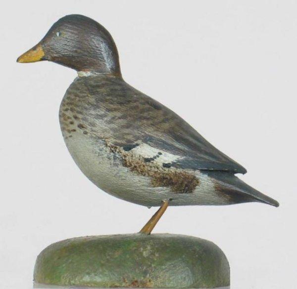 4: Crowell Mini Goldeneye Hen