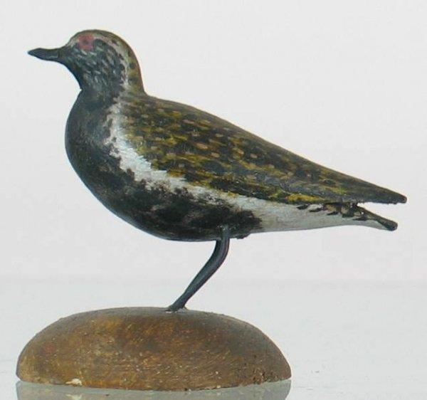 9: Crowell Miniature Golden Plover