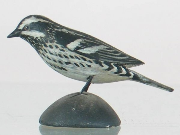 12: Crowell Miniature Black and White Warbler
