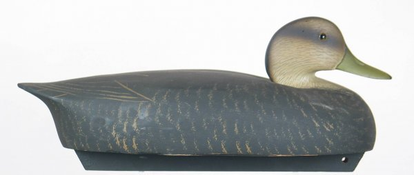 365Q: A8.  Wildfowler Low Head Black Duck Decoy