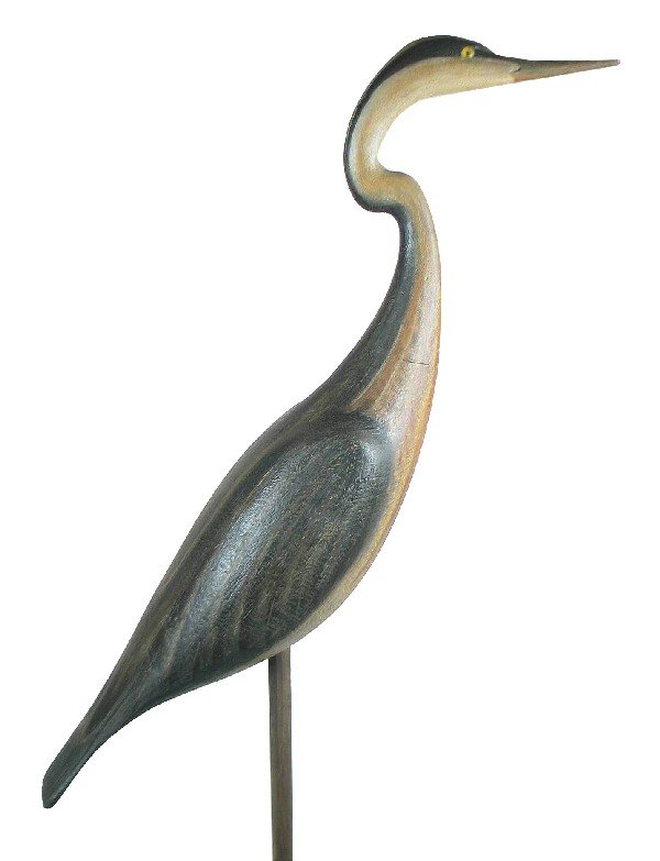 1: Life size great blue heron in XOC. (48 in tall inclu