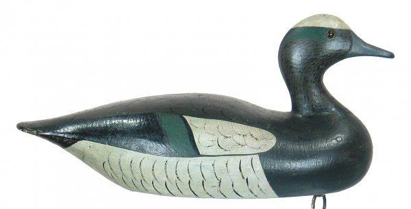 528B: Widgeon Drake by Joseph Lincoln