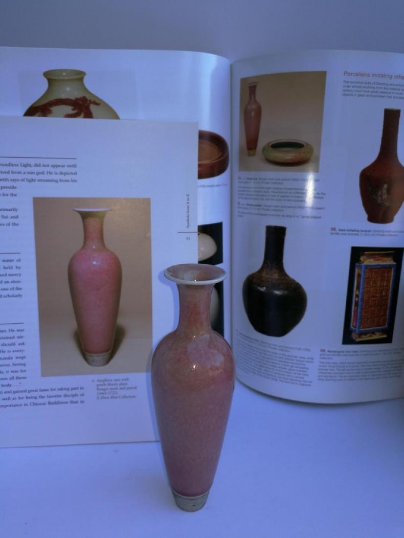 Chinese Porcelain Willow Bottle Da Qing Kangxi Nian Zhi