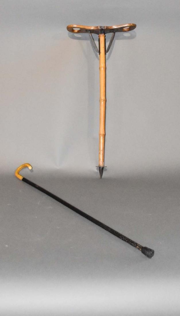 2 canes
