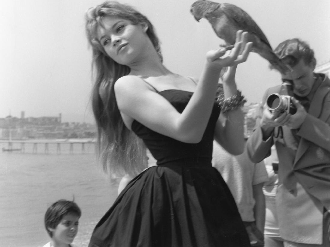 Brigitte Bardot. Original photograph. Cannes 1955.