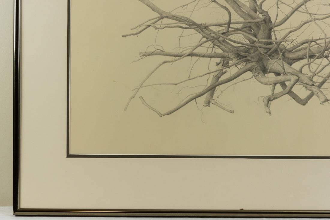 Bonnie Maclean (PA, 1939-?) Pencil - 4
