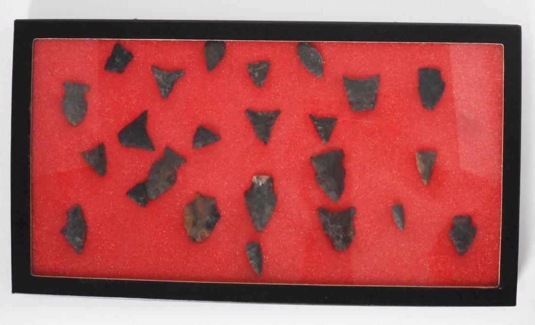Collection Arrowheads Riker Case