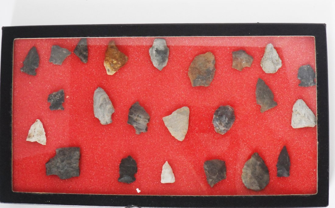 Collection Arrowheads Riker Case