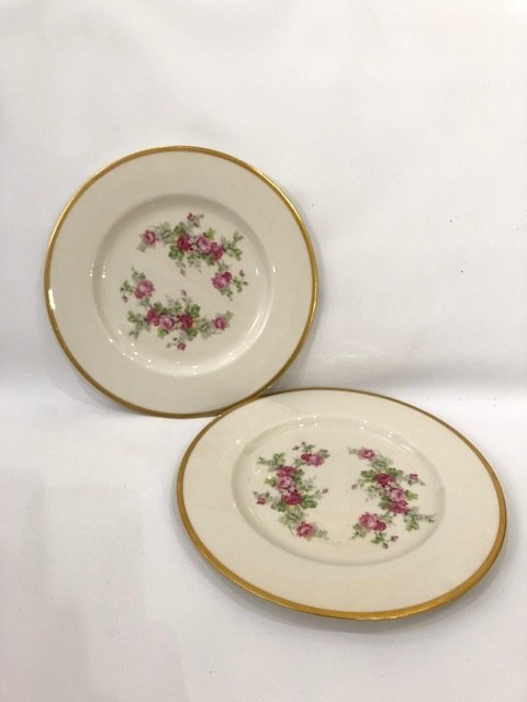 Pair of porcelain dinner plates with gold trim & floral