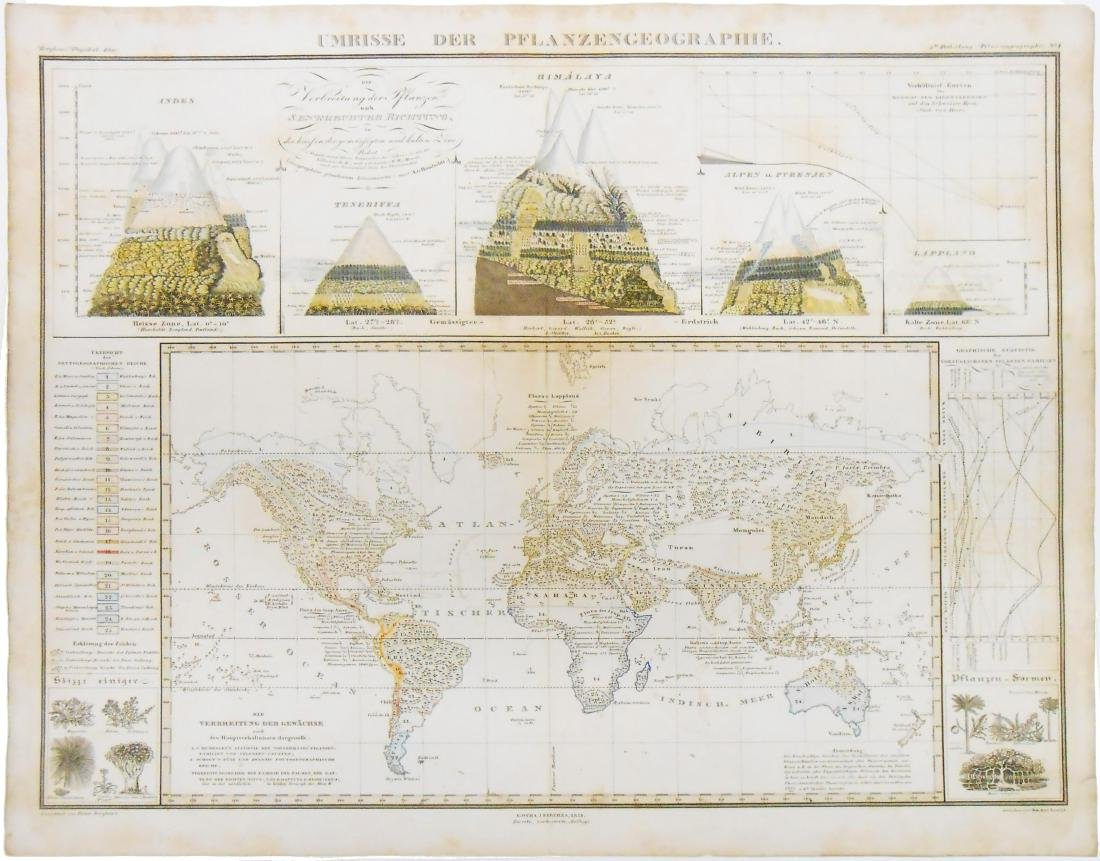 1851 MAP OF WORLD ENVIRONS