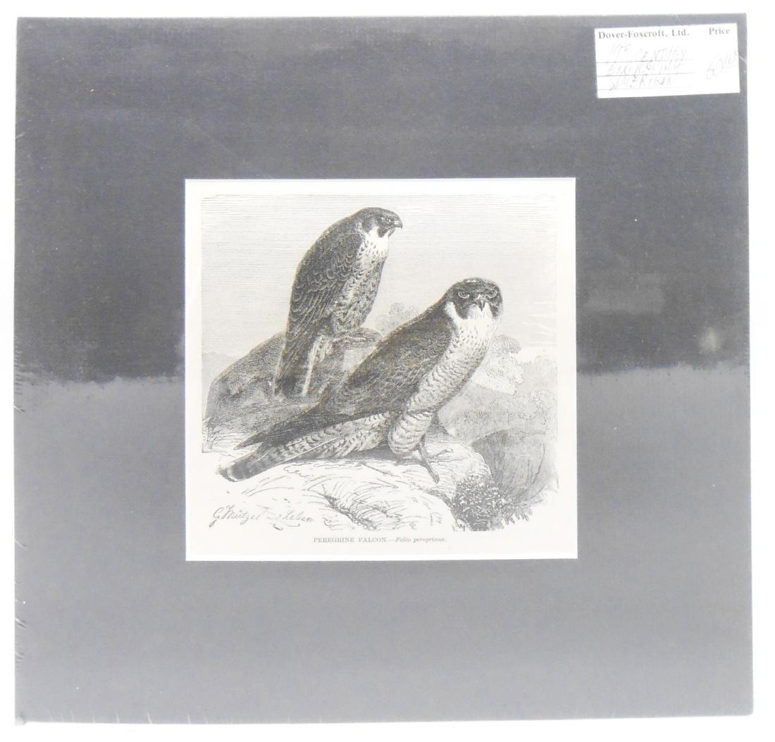 (32) 18TH & 19TH CENTURY PRINTS OF BIRDS - 2