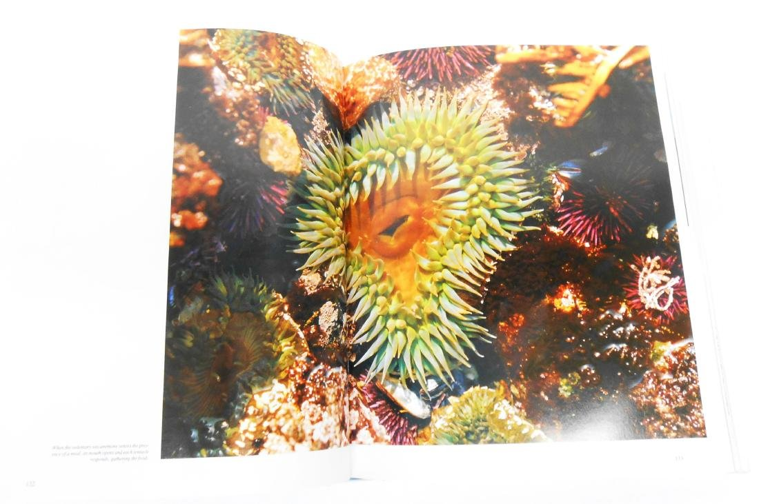 """JACQUES COUSTEAU """"THE OCEAN WORLD"""" BOOK - 4"""