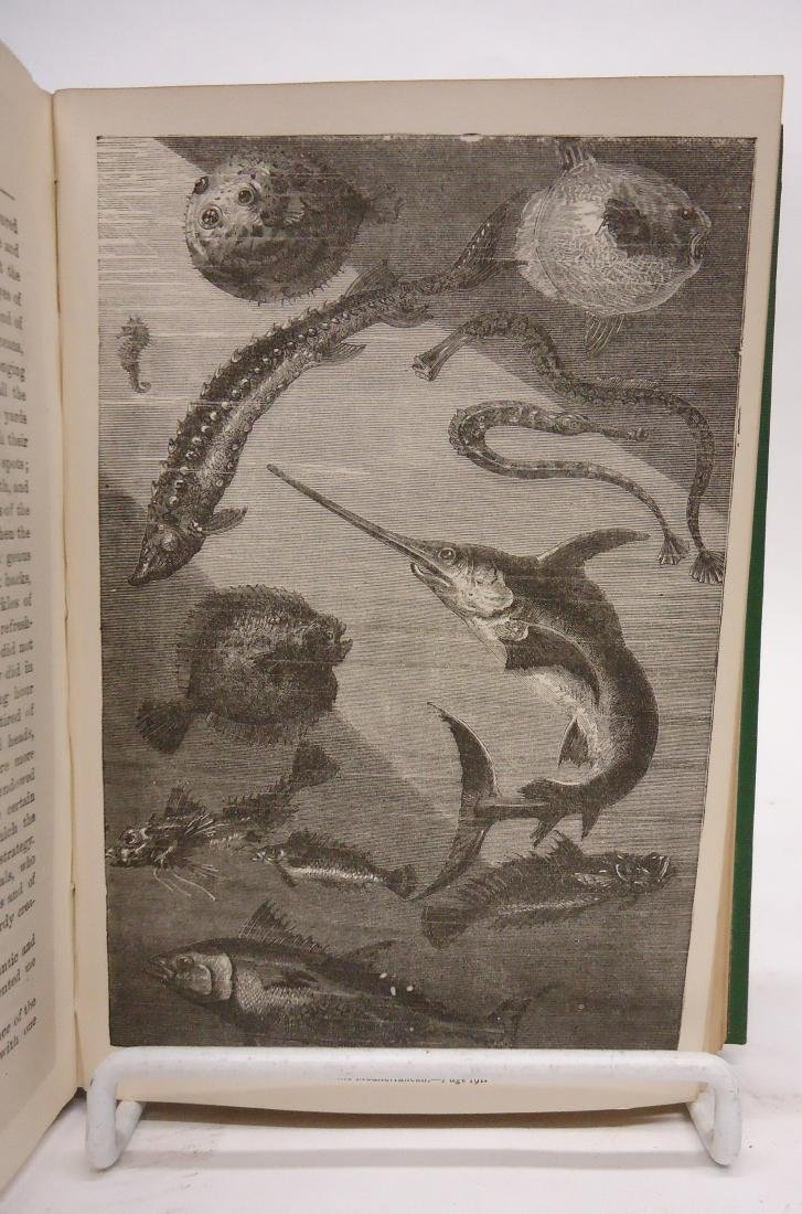 VERNE 20,000 LEAGUES UNDER THE SEAS - SMITH 1873 - 3