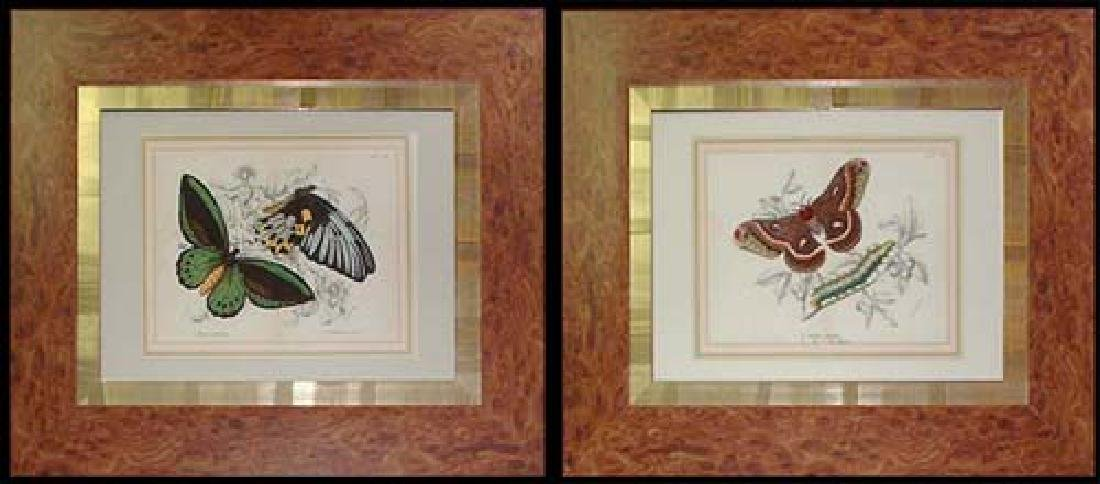 Pair of Lithographs Published by Wyman & Son Limited