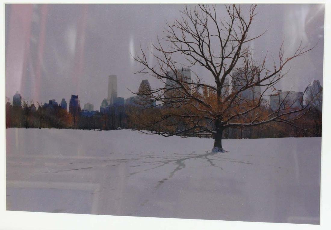 Lithograph of a Snowy Central Park New York - 2