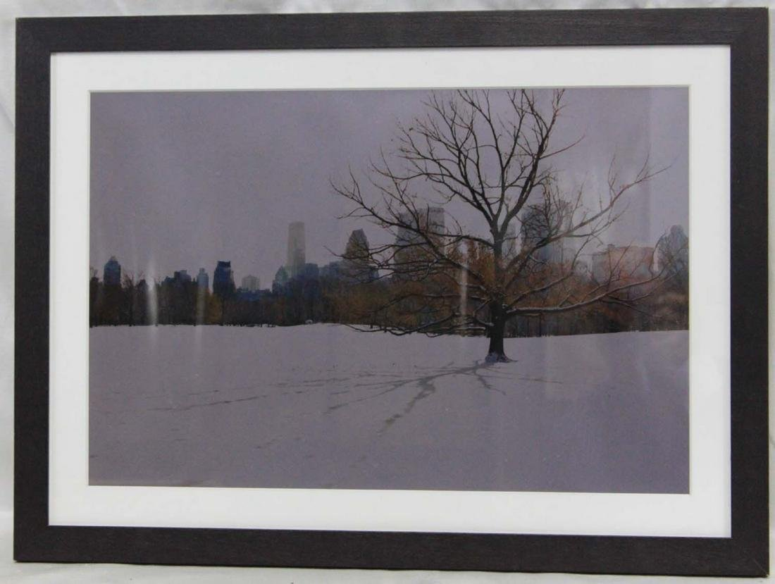 Lithograph of a Snowy Central Park New York