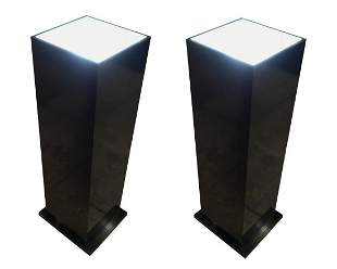 Contemporary Modern Acrylic/Wood Lighted Pedestals
